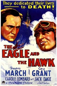Eagle and the hawk